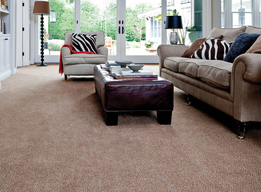 Premier Stainmaster National City Ca Sid S Carpet Barn